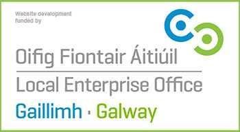 LEO-Galway-Logo 350