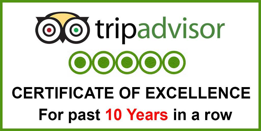 TripAdvisor-past-10-years