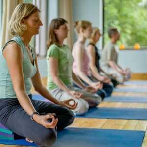 Meditation group mudhra