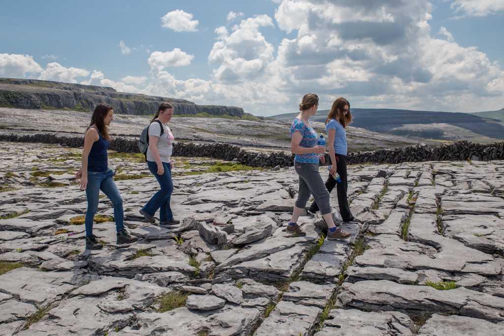 Organised Burren walks